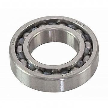30 mm x 55 mm x 13 mm  KOYO N1006 cylindrical roller bearings